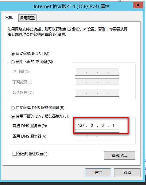 将DNS地址指向自己的IP
