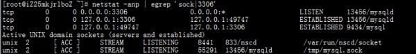MySQL Socket 连接